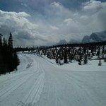 Banff Trail Halfway Point