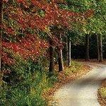 Autumn - Callaway Gardens