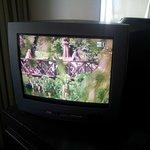 Пузатый телевизор