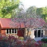 Rascal Cottage