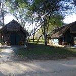 Lodge tents
