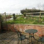Our mini garden