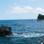 Onomea Bay Hawaii Tropical Botanical Garden