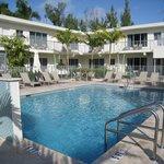 The beautiful courtyard pool