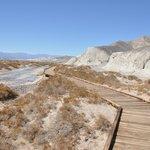 boardwalk along salt creek trail