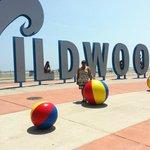main entrance at wildwood beach