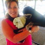 monkey holding