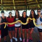 snake oh my!