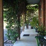 Entry/Front Garden