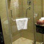 Bathroom. Shower, no tub.