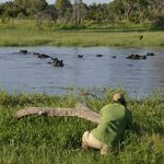 African Safari Guru Tours & Lodge Transfers