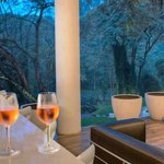 Westhouse bar, overlooking Karura forest