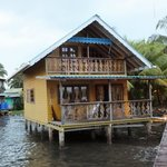 Sea horse cabin