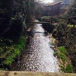 Nice walk in Prestbury