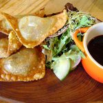 Pulled Pork wontons with Asian dipping sauce