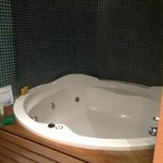 Huge jacuzzi bath (which you pay extra for)