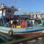 Fishing boat arrival