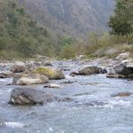 Ganga tributary nearby (Hyoul River)