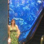 reception area with aquarium