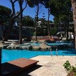 Pool by Junior Suites