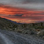 Sunset from Racetrack Rd on way out with Joshua Trees