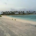 parte di spiaggia base molto piatta ,dura e grigia come cemento con sabbia riportata ..