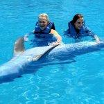 Cabo Adventures Dolphin Swim