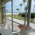 "View from ""ocean view"" room 412.  Pool is behind hedge"