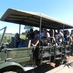 This is the safari vehicle. One is protected from the sun, and every seat offers a really good v