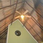 ceiling in cabana