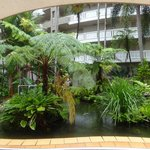 The ambience of the central tropical garden atrium