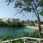 Coral Cove Adult Beach