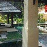 villa garden with pool