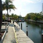 Back Dock