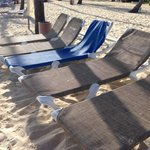 Lots of beach chairs everyday