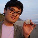 a sand dollar found on the beach