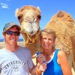 Outback - Camel Adventure Cabo San Lucas