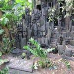 Inside the Rainforest Biome