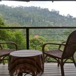 enjoy a coffee or tea while looking out at the beautiful nature