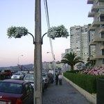 Avenida Perú (llena de flores)