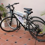 Bicycle fleet for guests