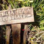 trilha em Itacare