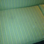Stains on couch