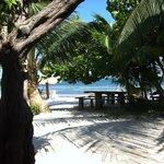 a beachy life