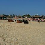 Bagga beach