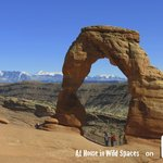 Delicate Arch by At Home in Wild Spaces