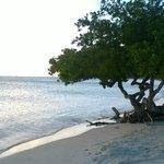 Spiaggia vicina al Camacuri