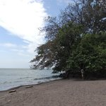 Nearby swimming beach with fantastic breeze and shade