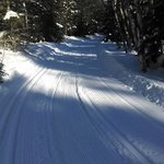 XC ski trails go right from our front door!