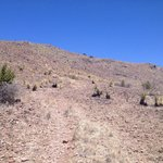 Indian lodge trail - hardly discernible.